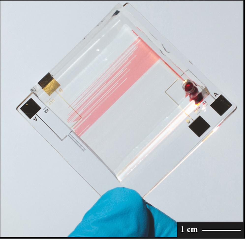 Bild - Sponsored Post: Der DAS FEST-Becher und berührungsfreie Analyse von Gasen und Flüssigkeiten