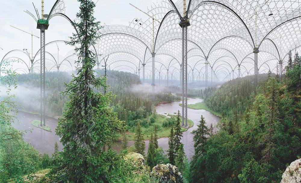 Bild: Inventing Nature – Pflanzen in der Kunst
